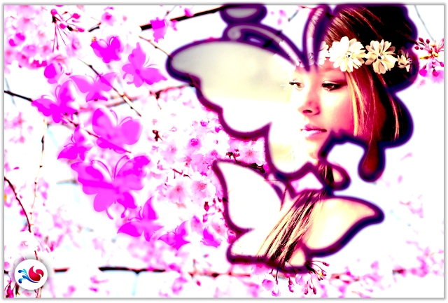 Flori & fluturi 6.jpg